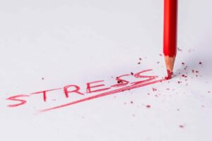Stress Checker